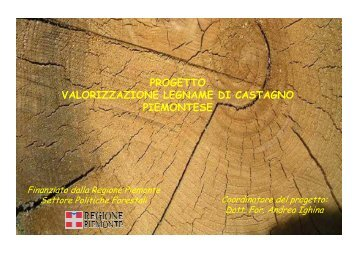 Il progetto - Regione Piemonte