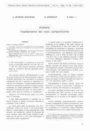 scarica pdf 26312.515KB - Museo Tridentino di Scienze Naturali