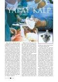 Biyonik İnsan - Page 6