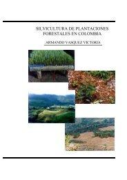 silvicultura de plantaciones forestales en colombia - Universidad del ...