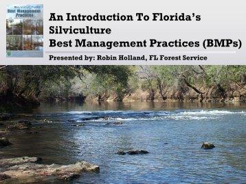 Silviculture Best Management Practices