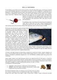 PESCA A CARPFISHING.pdf - Home | Ufficio Pesca della Provincia ...