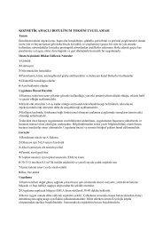 Yazıyı pdf formatında indirmek için tıklayınız.