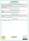 Scheda Viburnum - Verde Commerce - Page 2