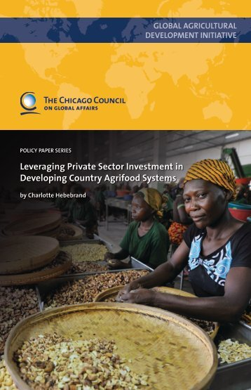 Leveraging Private Sector Investment in Developing Country ...