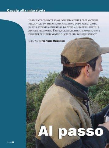 Leggi l'articolo in formato Pdf tratto da DIANA N ... - Caccia Passione