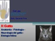 Dott. Gerardo Fina - Provincia di Piacenza