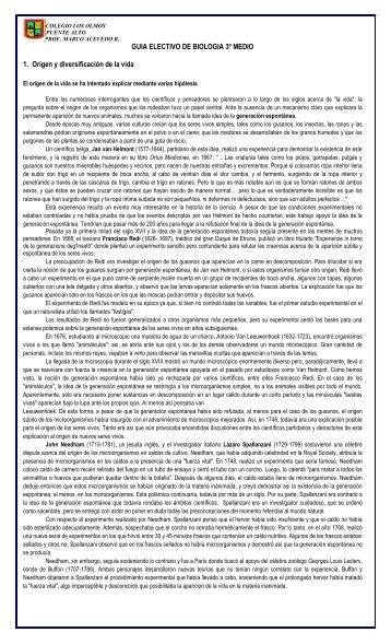 Descarga - Colegio Los Olmos