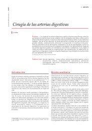 Cirugía de las arterias digestivas - cinco