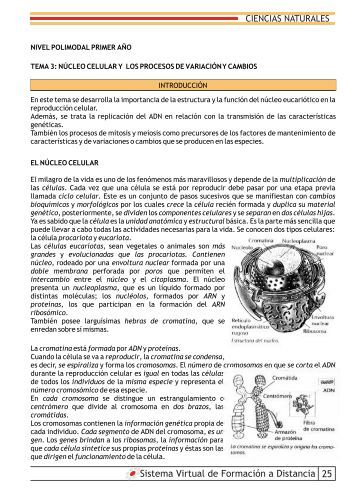 Ciencias Naturales tema 3 - Edusalta