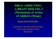 DRUG ADDICTION : A BRAIN DISEASE. I (Mechanism of Action of ...