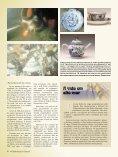 O Navegante das Índias Orientais - Sueca Rolamentos Ltda. - Page 4