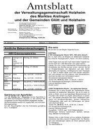 Holzheim KW 42.cdr