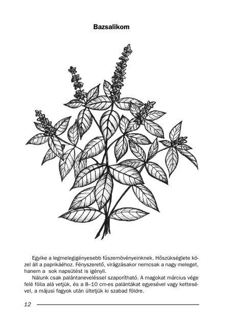 Különleges növények a háztájiban - MEK