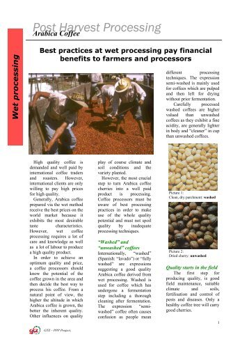 Post Harvest Processing