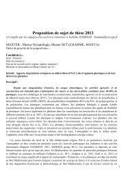Apports, dégradation et impacts en milieu littoral PACA des ... - Cerege