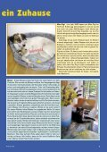 Heft 3/2010 - Pro Tier - Page 5