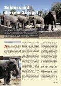Heft 3/2010 - Pro Tier - Page 6