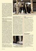 Heft 3/2010 - Pro Tier - Page 7