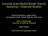 Armored Scale Blythe Border Station Sampling / Dispersal Studies