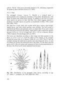 10. Pineapple - The International Potash Institute - Page 4