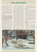 Cancro colorato del platano (seconda parte) - A.R.S.S.A. Abruzzo - Page 2