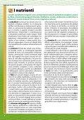 Conoscere i cibi vegetali - AgireOra Edizioni - Page 4