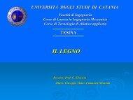 La struttura del legno - Dmfci - Università degli Studi di Catania