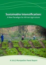 Sustainable Intensification: