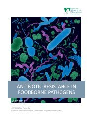 ANTIBIOTIC RESISTANCE IN FOODBORNE PATHOGENS
