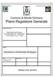 sintesi non tecnica - Provincia di Pesaro e Urbino