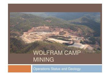 WOLFRAM CAMP MINING