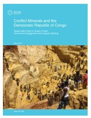 Conflict Minerals and the Democratic Republic of Congo - BSR