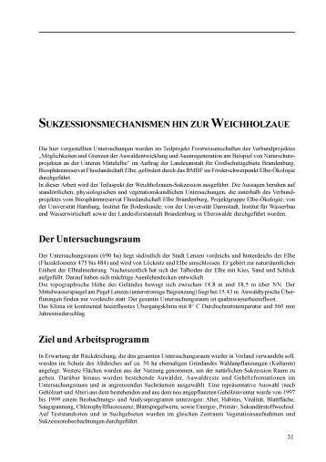 Sukzessionsmechanismen hin zur Weichholzaue - Genres