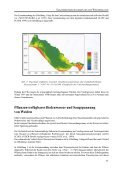 Sukzessionsmechanismen hin zur Weichholzaue - Genres - Seite 3