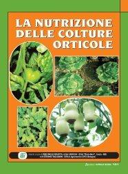 la nutrizione delle colture orticole la nutrizione ... - Ermes Agricoltura