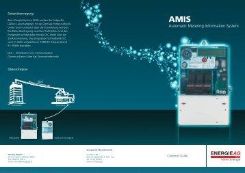 AMIS Beschreibung Folder.indd - Netz GmbH