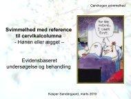 Cervikogen svimmelhed - Praktiserende
