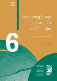 Engineering Energy: Unconventional Gas Production