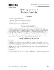 AP Lab 2 Enzyme Catalysis Manual.pdf - Biology Alive