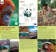 ANNO INTERNAZIONALE DELLE FORESTE - WWF Caserta