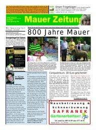 800 Jahre Mauer - Liesing online