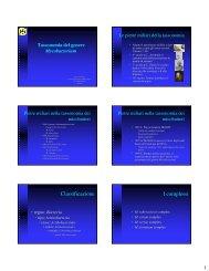 Classificazione I complessi - Myco09