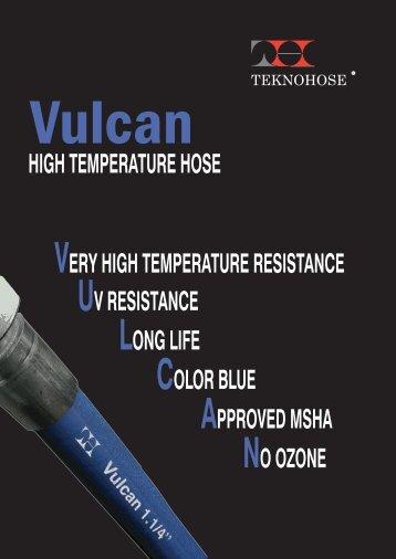 vulcan def esterno 160409 - Vitillo