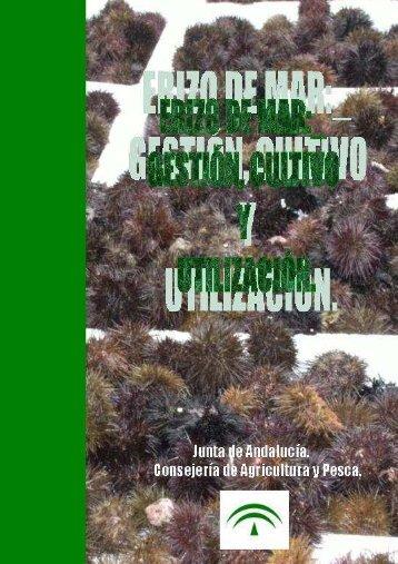 erizo-cultivo-gestion-utilizacion - Blog Acuícola de misPeces.com