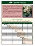 Helleborus Varieties - Skagit Gardens - Page 2