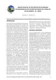 análise espacial de três espécies de echinoidea (echinodermata)