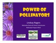 Power of Pollinators - Nebraska Game and Parks Commission