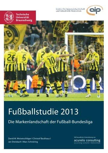 Fussballstudie_2013