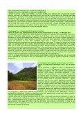 Raccolta Sentenze - Page 3